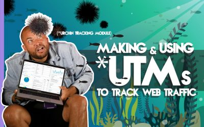 Making & Using UTMs To Track Web Traffic