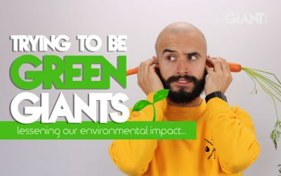 How We Are Lessening Our Environmental Impact 🌱