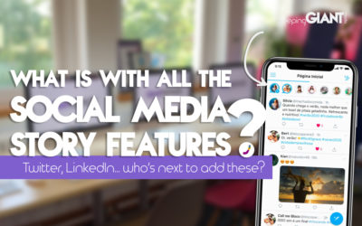 Why Are So Many Social Media Platforms Introducing Story Functionalities?
